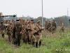 hatejamo-orosz-katonak